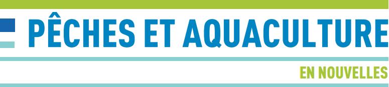 Pêche et aquaculture en nouvelles
