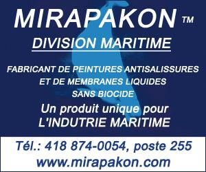 300 X 250 Mirapakon