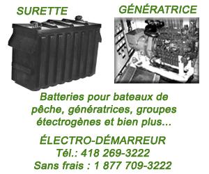 300 X 250 Électro-Démarreur