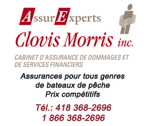 300 X 250 AssurExperts Clovis Morris