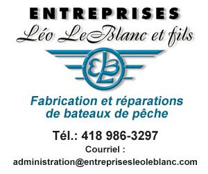 300 X 250 Entreprises Léo Leblanc