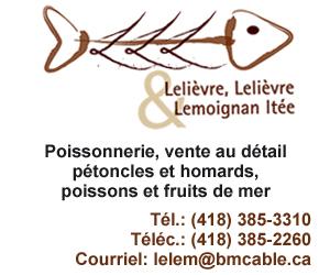 300 X 250 Lelièvre, Lelièvre et Lemoignan