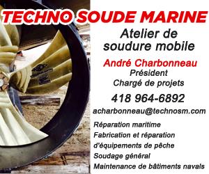 300 X 250 Techno Soude Marine