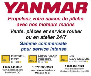 300 X 250 Yanmar